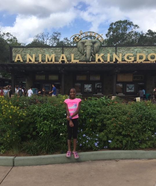 Animal Kingdom including avatar