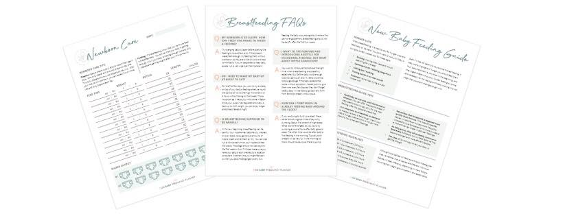 pregnancy planner useful sheets examples